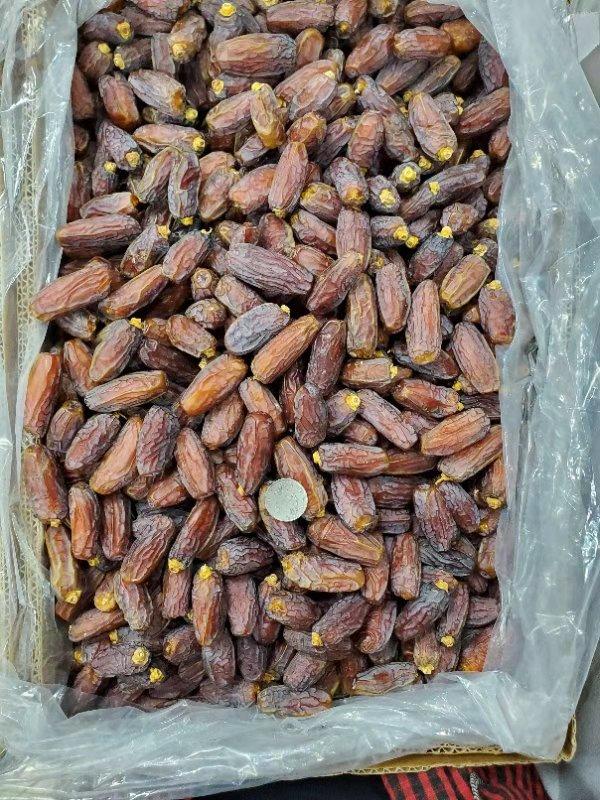 阿联酋黑椰枣